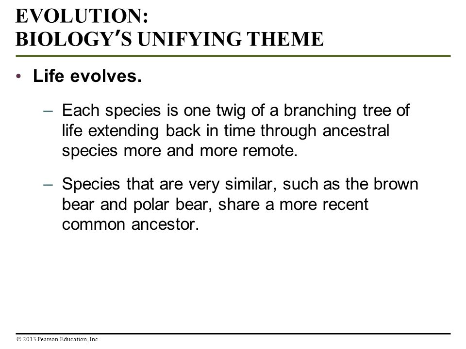 Life evolves. –Each species is one twig of a branching tree of life extending back in time through ancestral species more and more remote. –Species th
