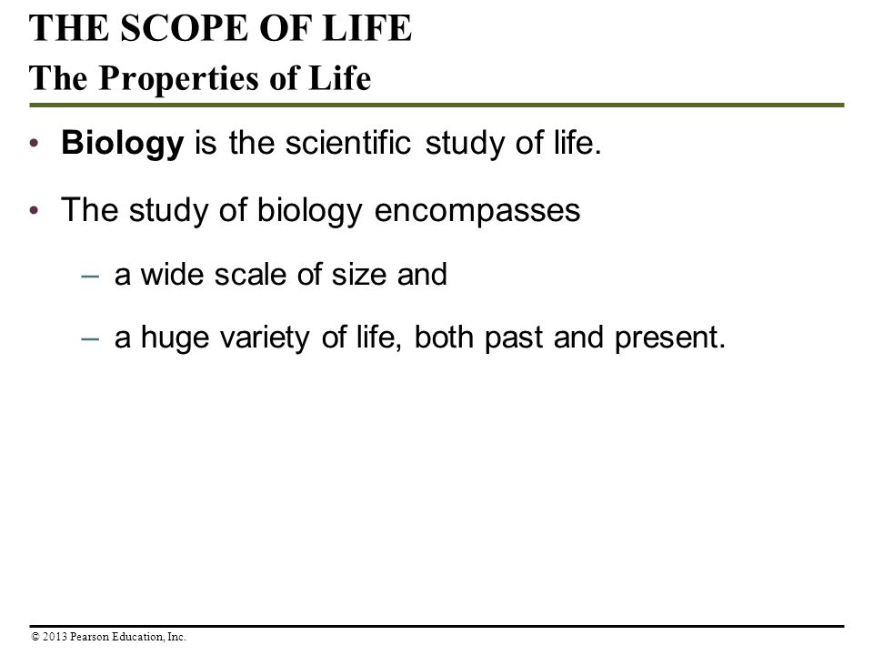 Biology is the scientific study of life. The study of biology encompasses –a wide scale of size and –a huge variety of life, both past and present. TH