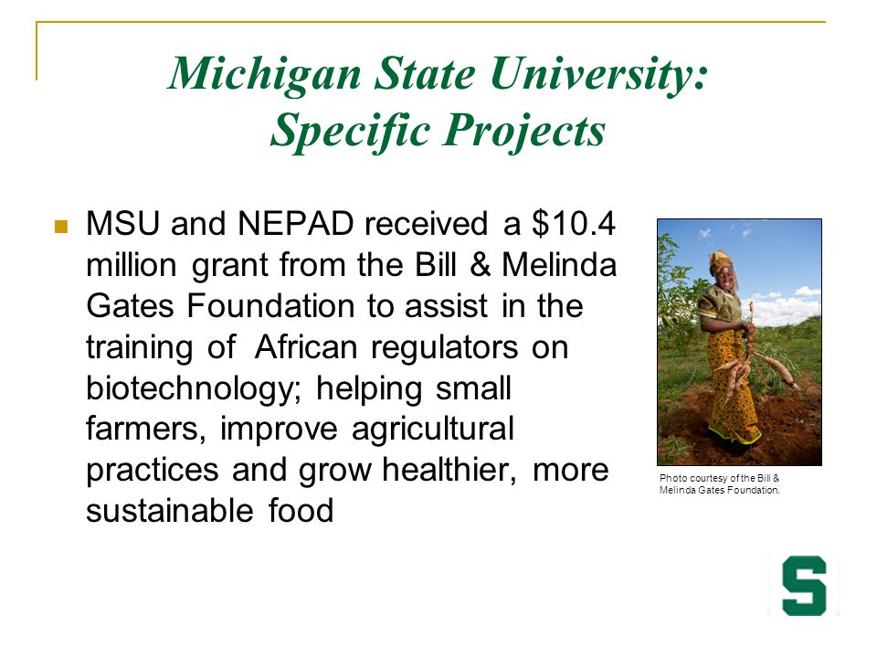 Michigan State University: Specific Projects MSU and NEPAD received a $10.4 million grant from the Bill & Melinda Gates Foundation to assist in the tr