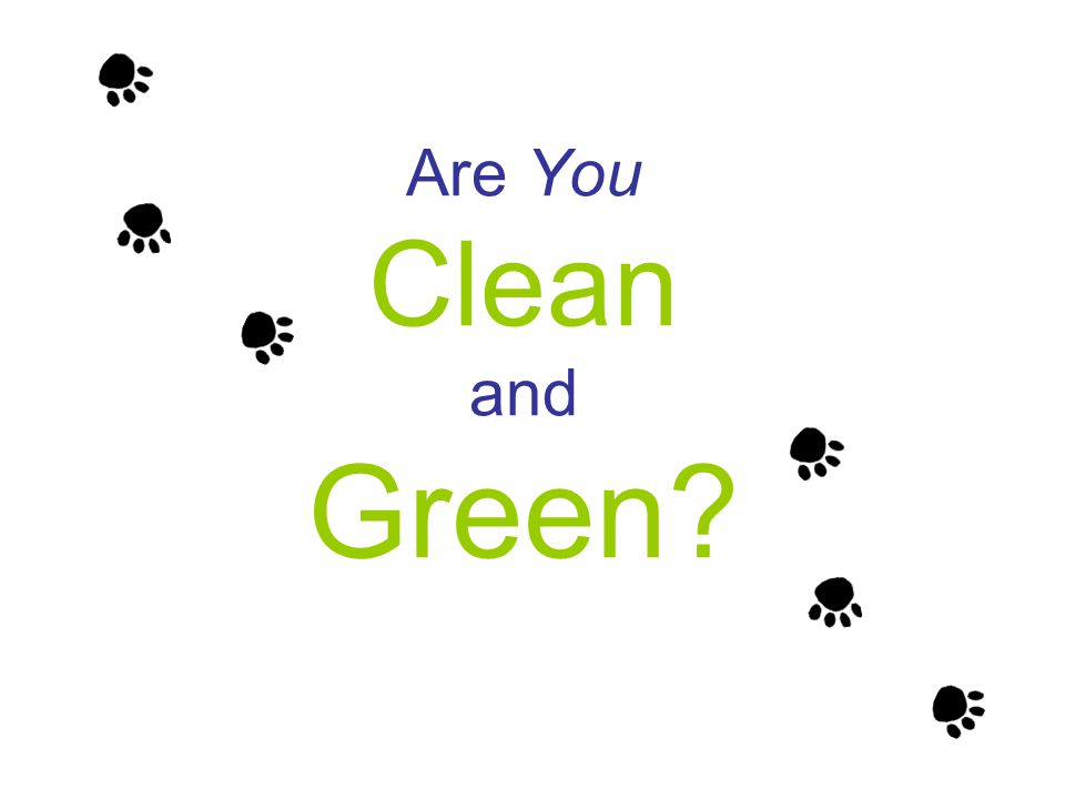 Are You Clean and Green