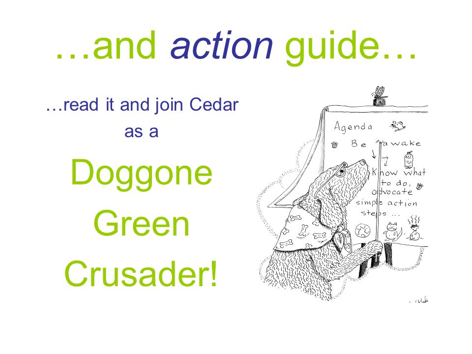 …and action guide… …read it and join Cedar as a Doggone Green Crusader!