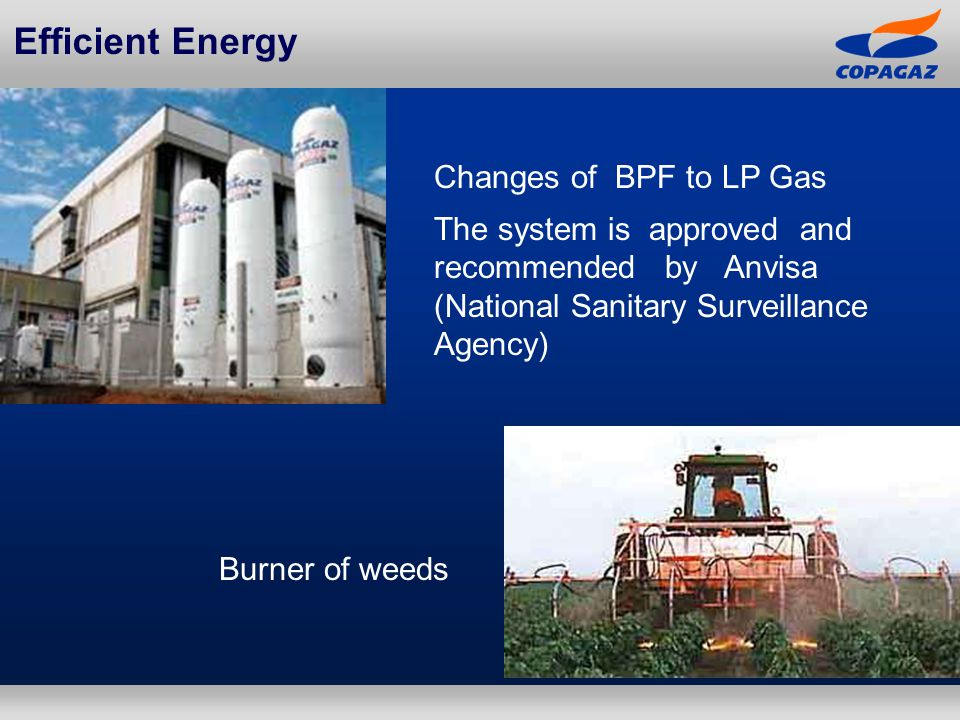 Changes of BPF to LP Gas The system is approved and recommended by Anvisa (National Sanitary Surveillance Agency) Efficient Energy Burner of weeds