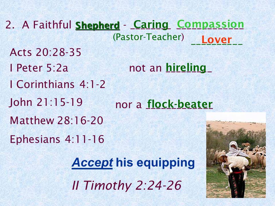 Shepherd 2.