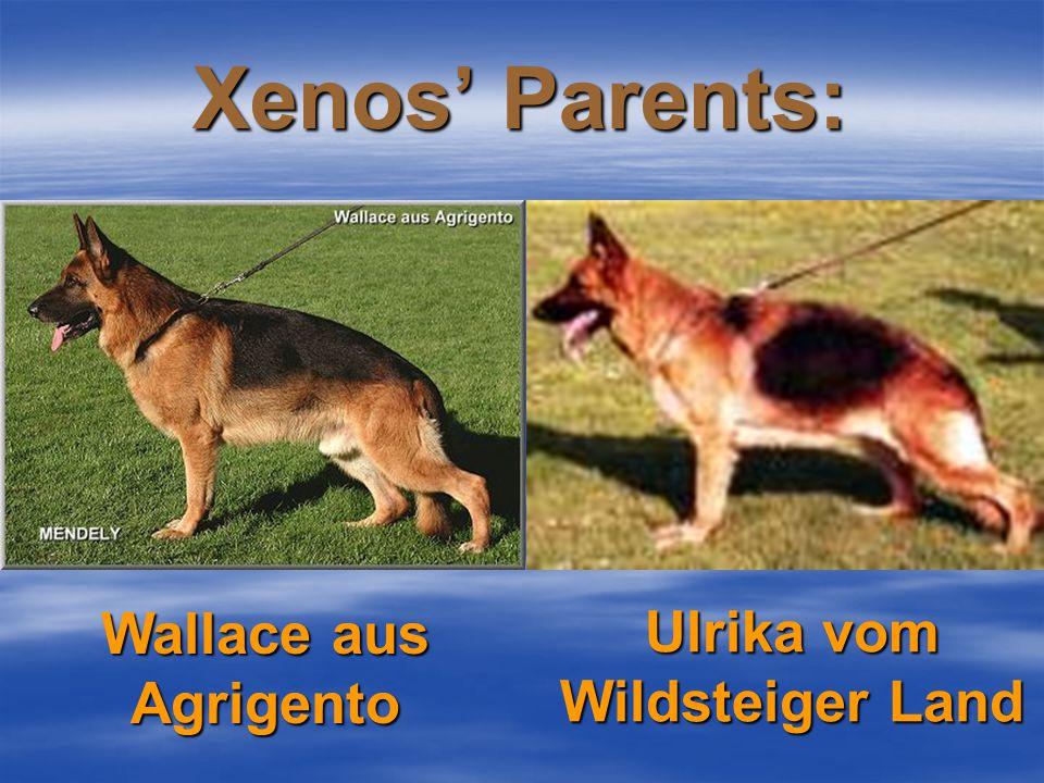 Meet the parents! Xenos Nanda