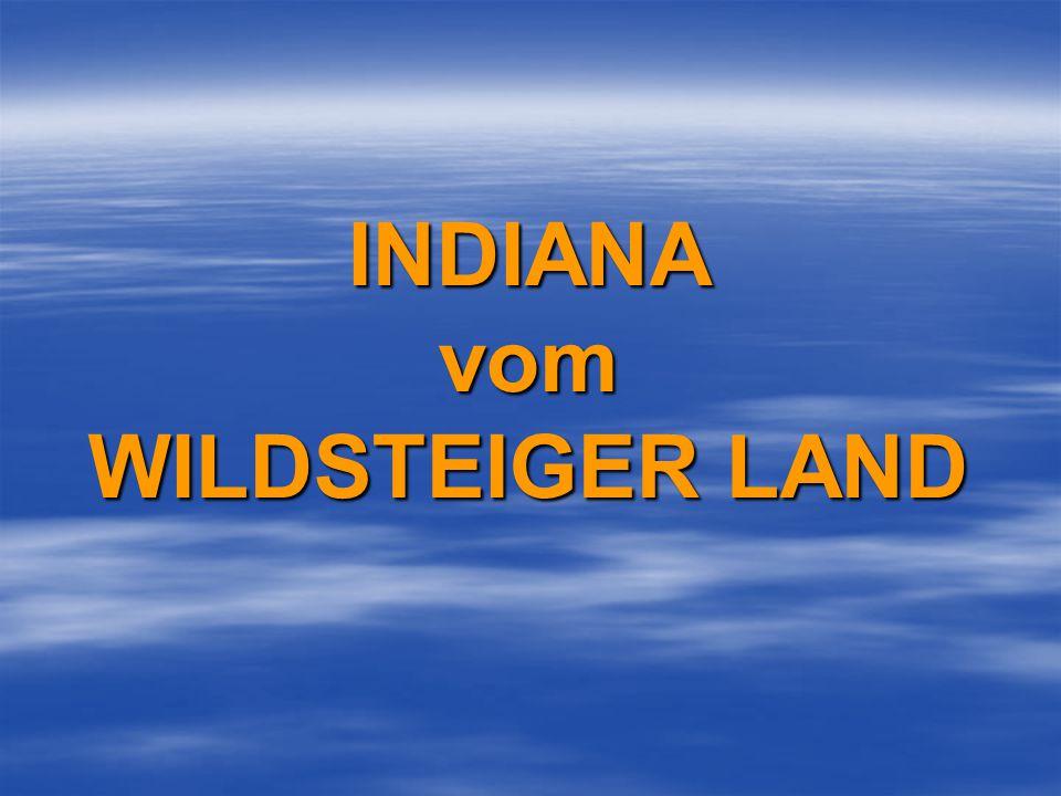 INDIANA vom WILDSTEIGER LAND