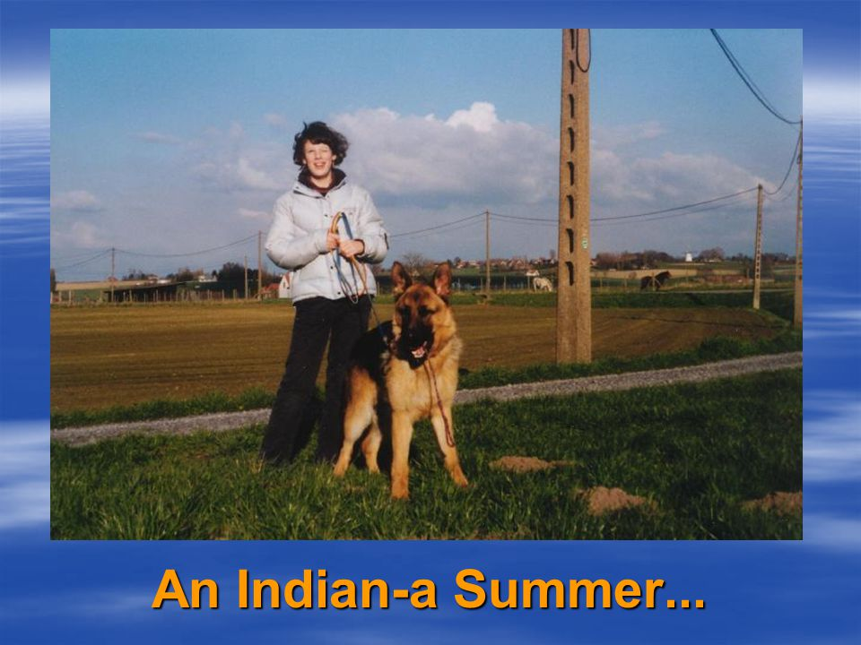  Indiana has been spotted in city centers and train stations,  getting used to crowds, traffic, and a lot of noises.
