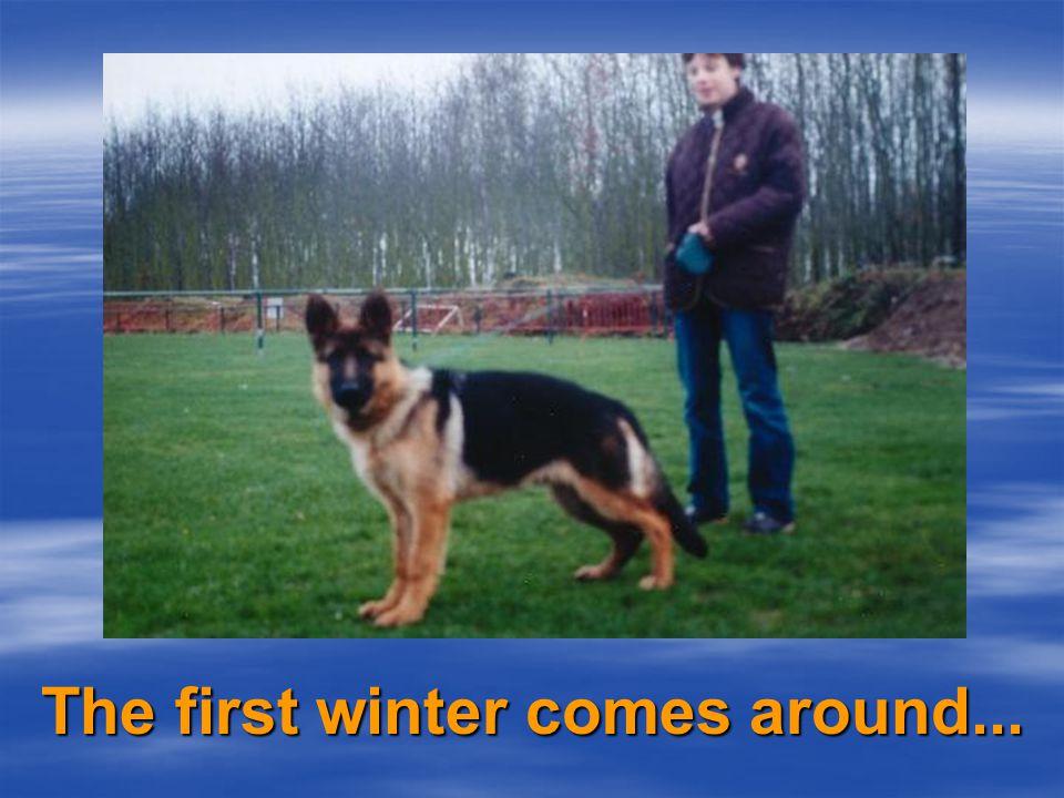 Winter 2003/2004
