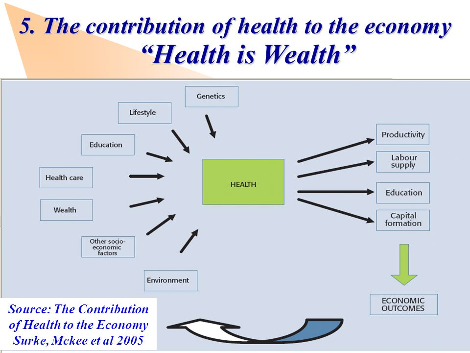 www.observatory.dk Source: The Contribution of Health to the Economy Surke, Mckee et al 2005 5.The contribution of health to the economy Health is Wealth