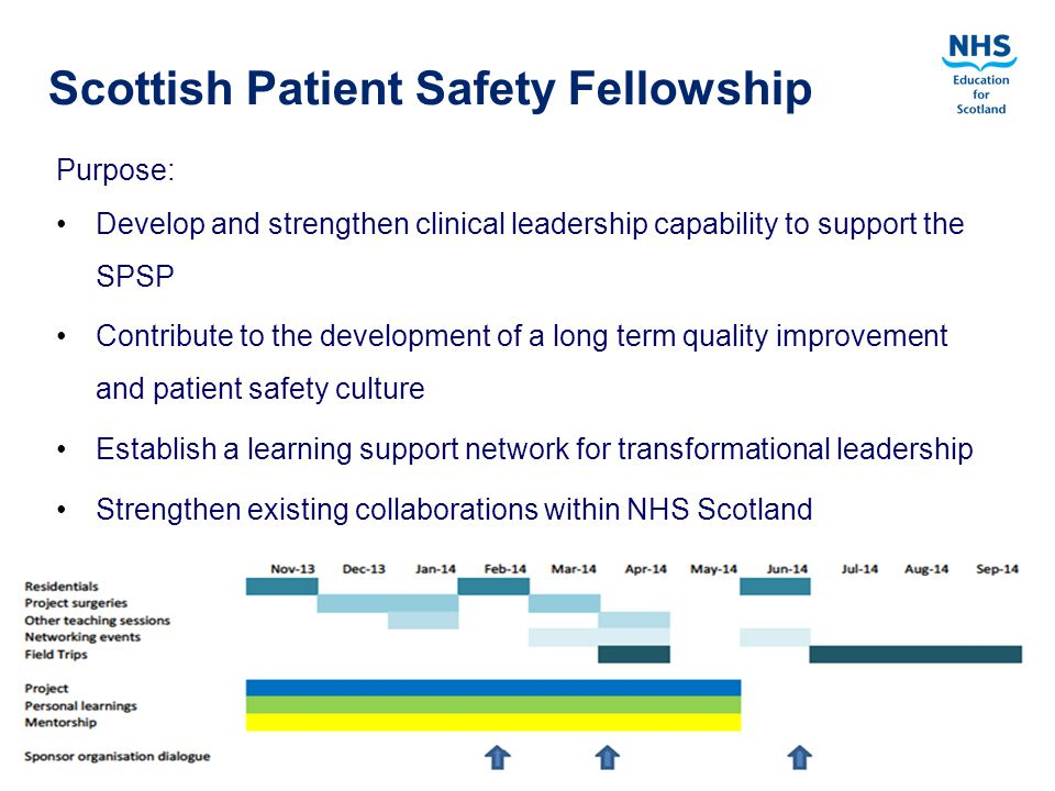 Quality Education for a Healthier Scotland Purpose: Develop and strengthen clinical leadership capability to support the SPSP Contribute to the development of a long term quality improvement and patient safety culture Establish a learning support network for transformational leadership Strengthen existing collaborations within NHS Scotland Scottish Patient Safety Fellowship