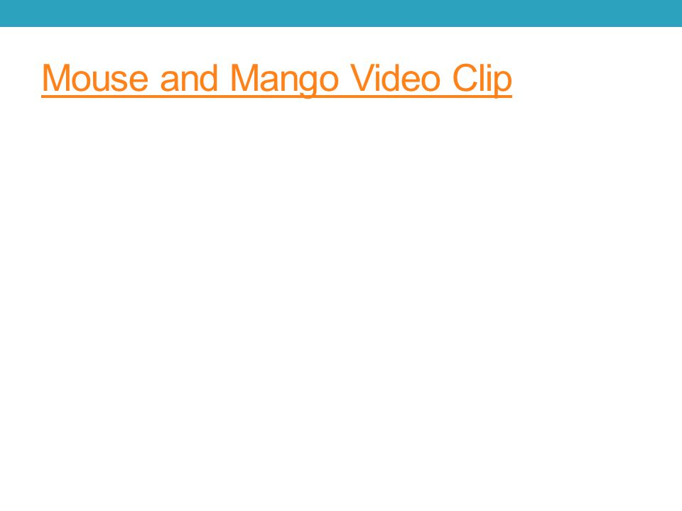 Mouse and Mango Video Clip