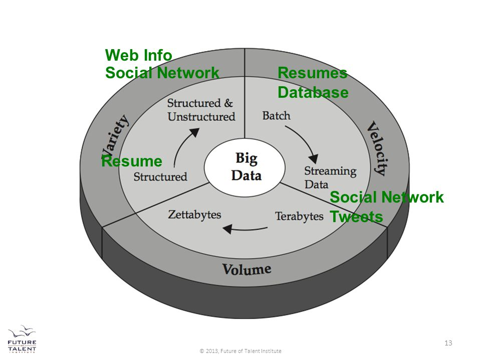 Resume Social Network Web Info Social Network Tweets Resumes Database 13 © 2013, Future of Talent Institute