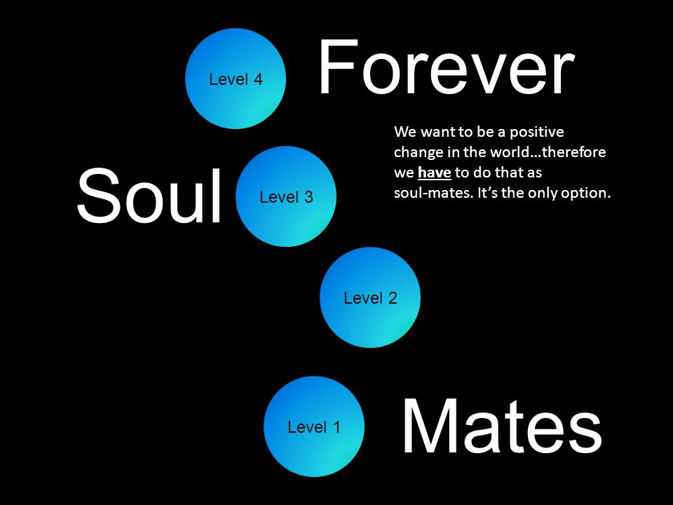 Level 2 Mates Soul Forever Level 1 Level 4 Level 3 We want to be a positive change in the world…therefore we have to do that as soul-mates.