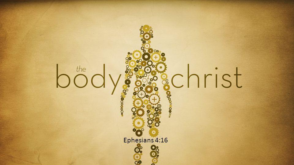 Ephesians 4:16