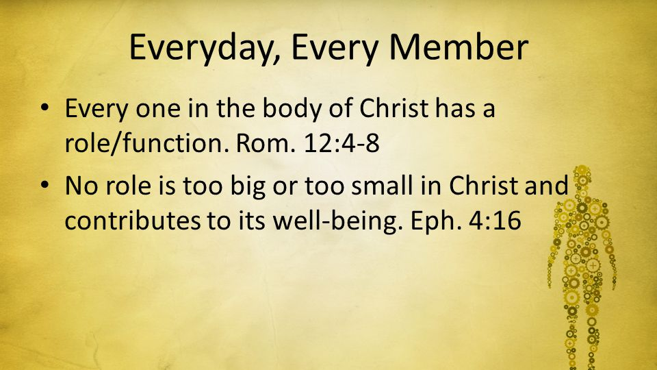 Everyday, Every Member Every one in the body of Christ has a role/function. Rom. 12:4-8 No role is too big or too small in Christ and contributes to i