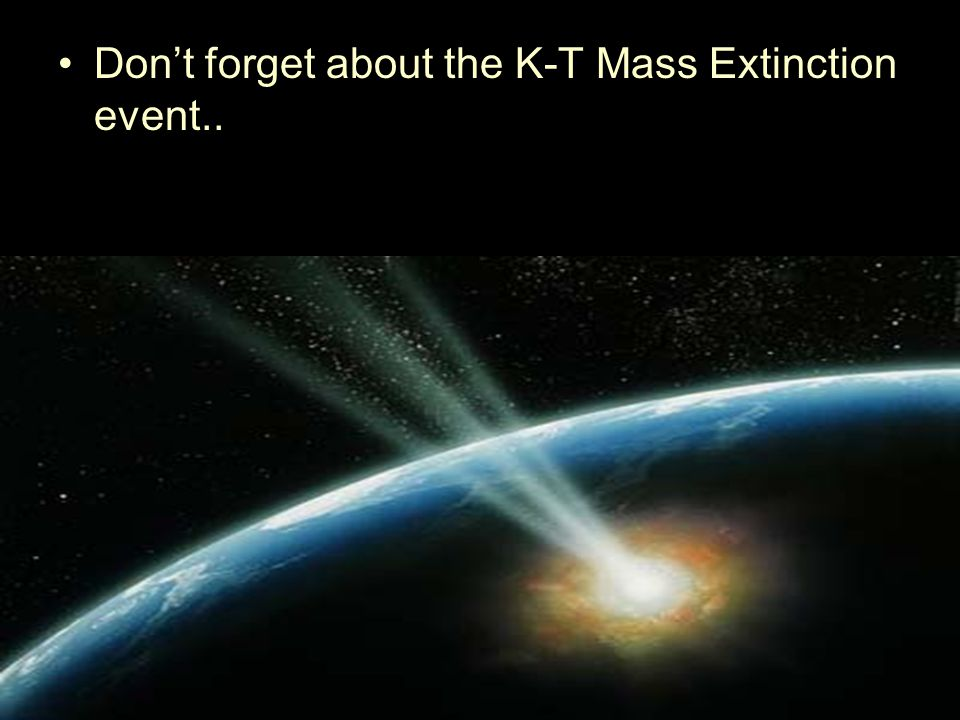 Don't forget about the K-T Mass Extinction event..
