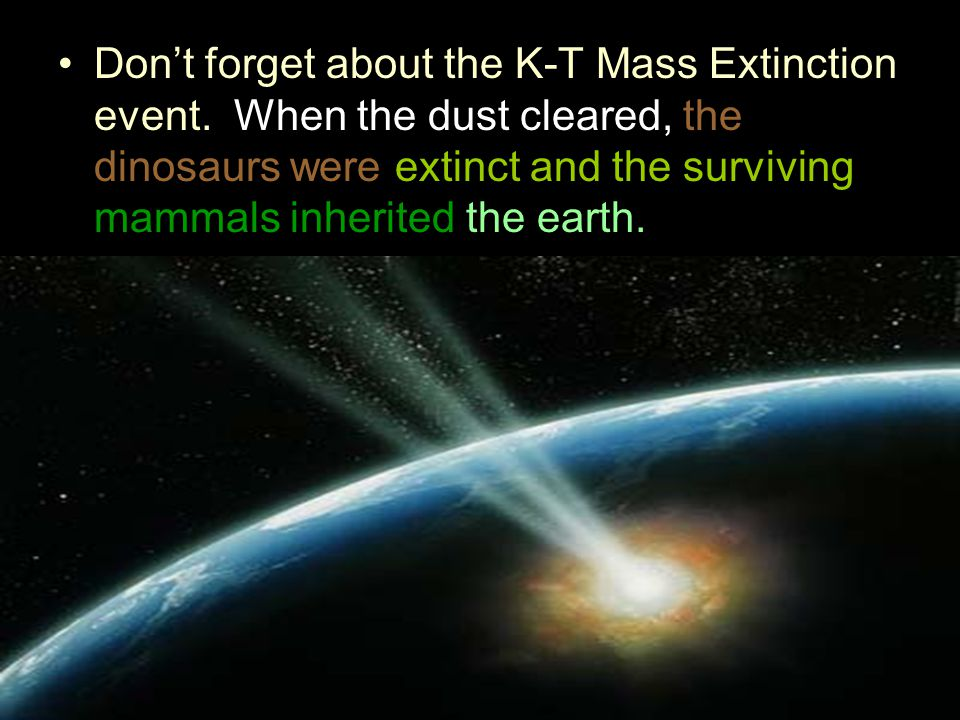 Don't forget about the K-T Mass Extinction event.