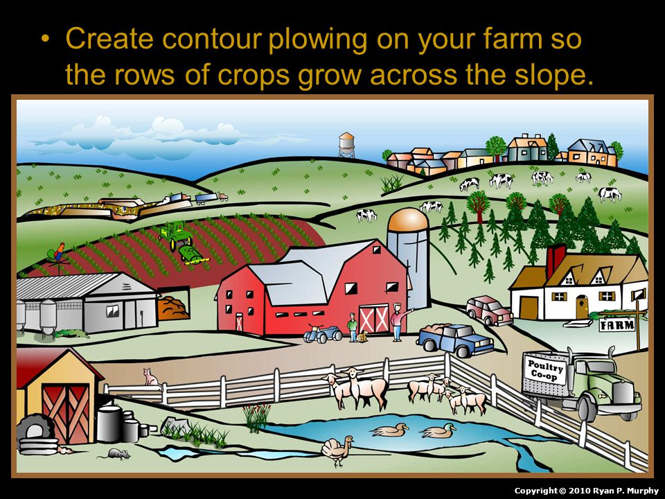 Create contour plowing on your farm so the rows of crops grow across the slope.