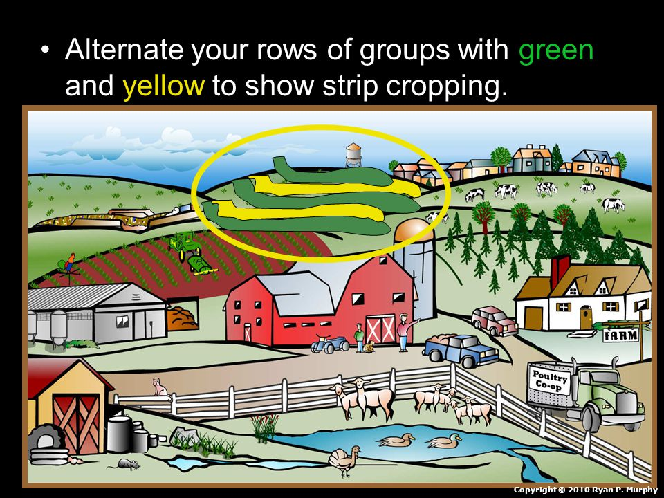 Alternate your rows of groups with green and yellow to show strip cropping.