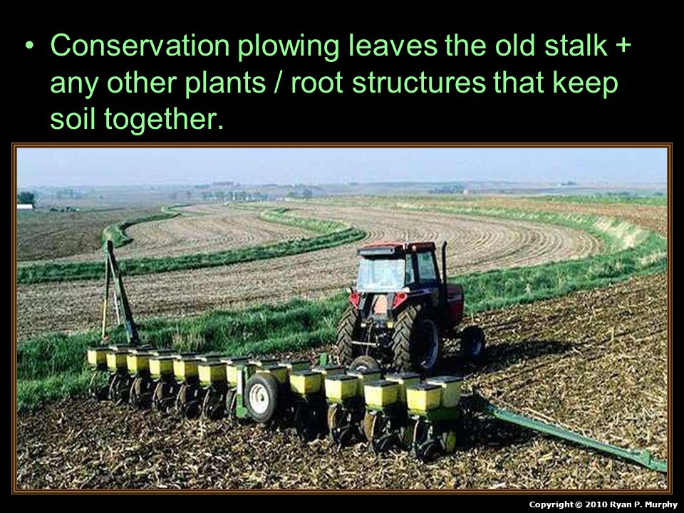Conservation plowing leaves the old stalk + any other plants / root structures that keep soil together.