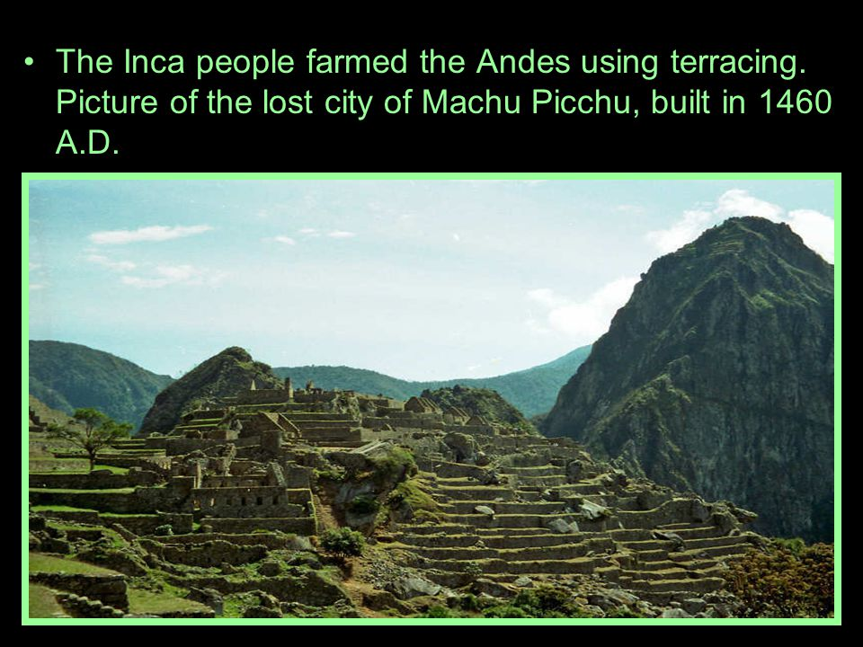 The Inca people farmed the Andes using terracing.