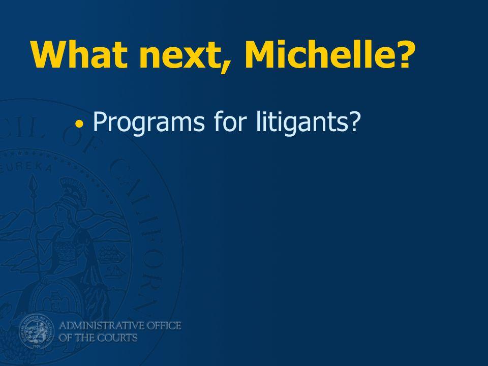 What next, Michelle? Programs for litigants?