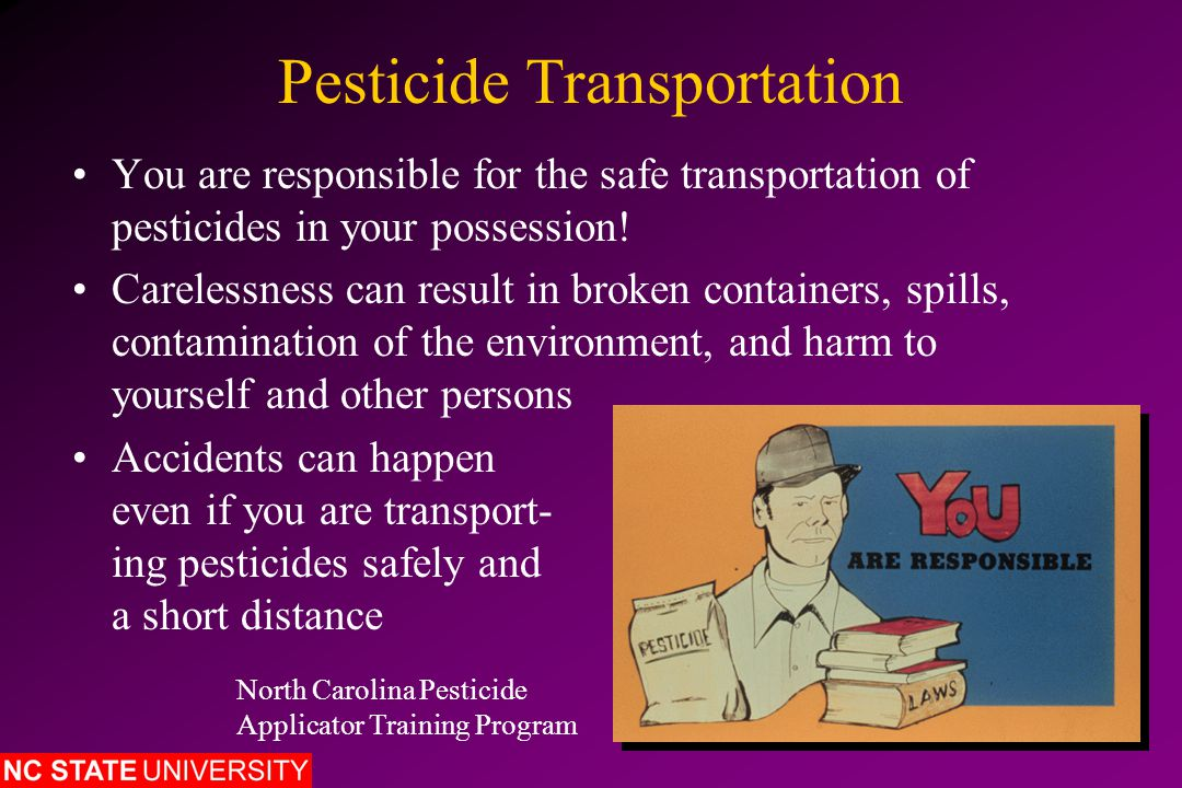 Pesticide Transportation You are responsible for the safe transportation of pesticides in your possession.