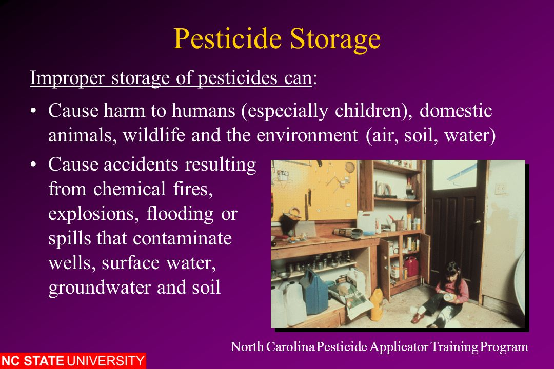 Pesticide Storage Extend shelf life of pesticides Keep pesticide containers in sound condition Keep pesticide labels clean and legible Proper storage of pesticides can: North Carolina Pesticide Applicator Training Program