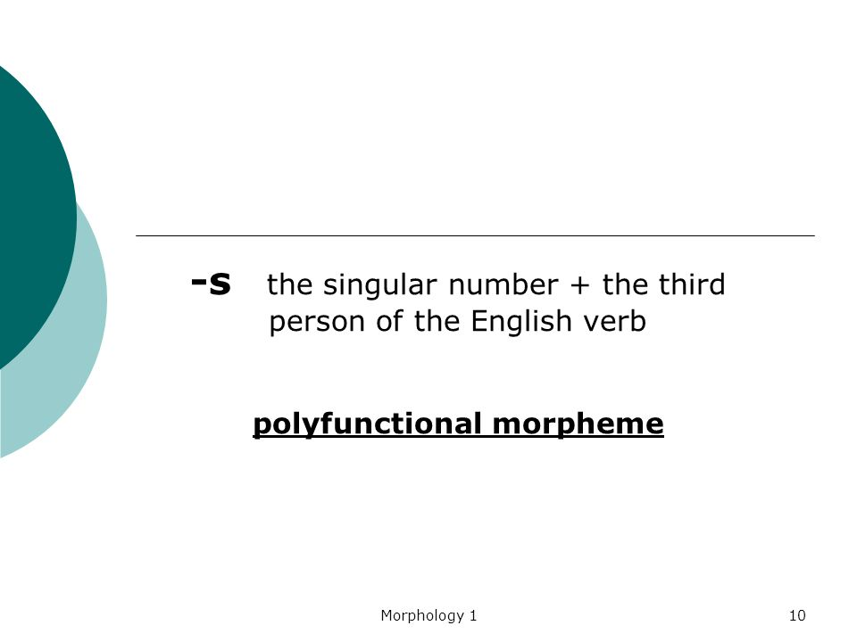 Morphology 110 -s the singular number + the third person of the English verb polyfunctional morpheme