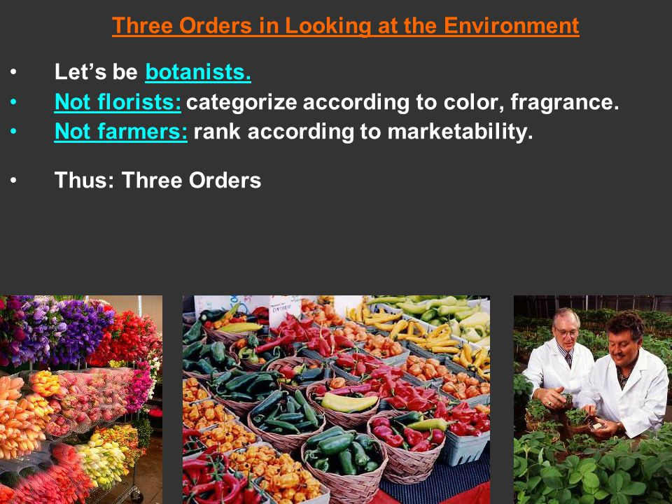 1.PHYSICAL ORDER (FORM): 2.TERRITORIAL ORDER (PLACE): 3.CULTURAL ORDER (UNDERSTANDING):
