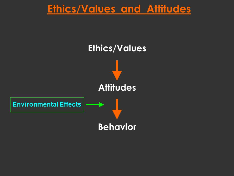Ethics/Values Attitudes Behavior Environmental Effects Ethics/Values and Attitudes