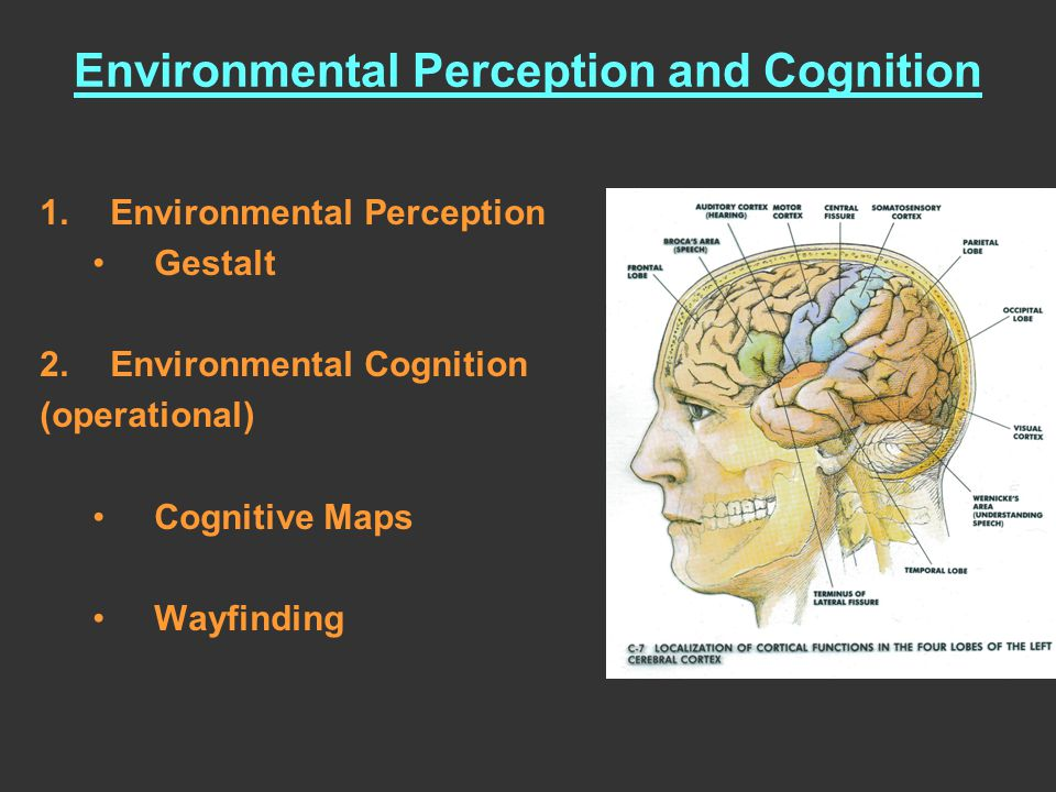 The process of thought that leads to knowing: –The psychological result of perception, learning, recognizing, reasoning.