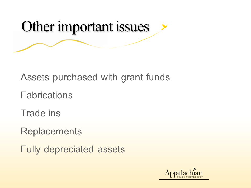 Other important issues Assets purchased with grant funds Fabrications Trade ins Replacements Fully depreciated assets