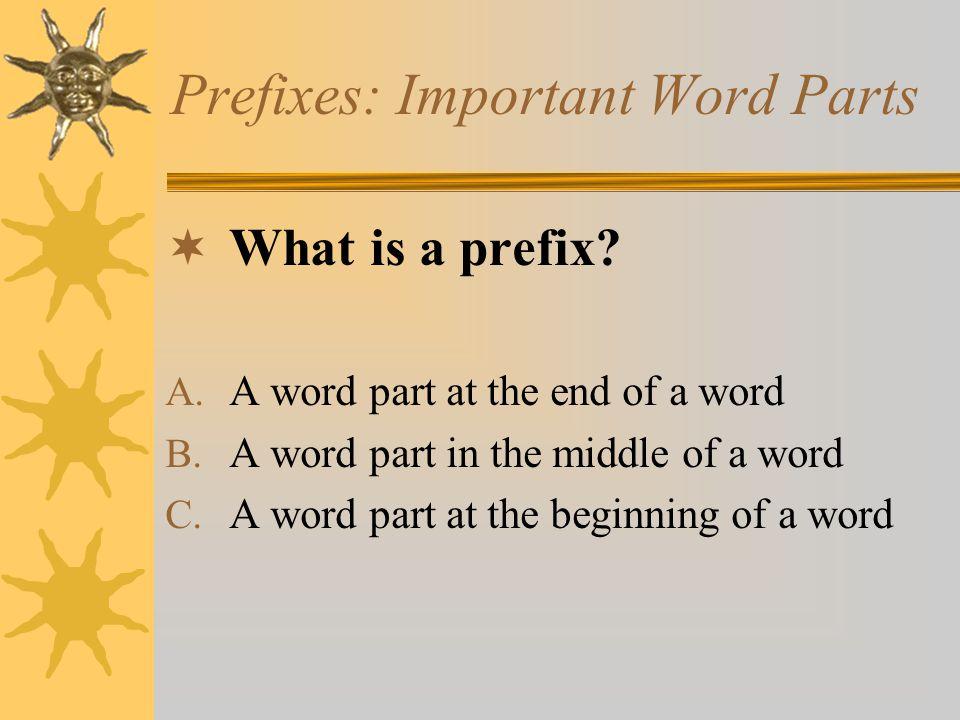 Prefixes: Important Word Parts  What is a prefix? A. A word part at the end of a word B. A word part in the middle of a word C. A word part at the be