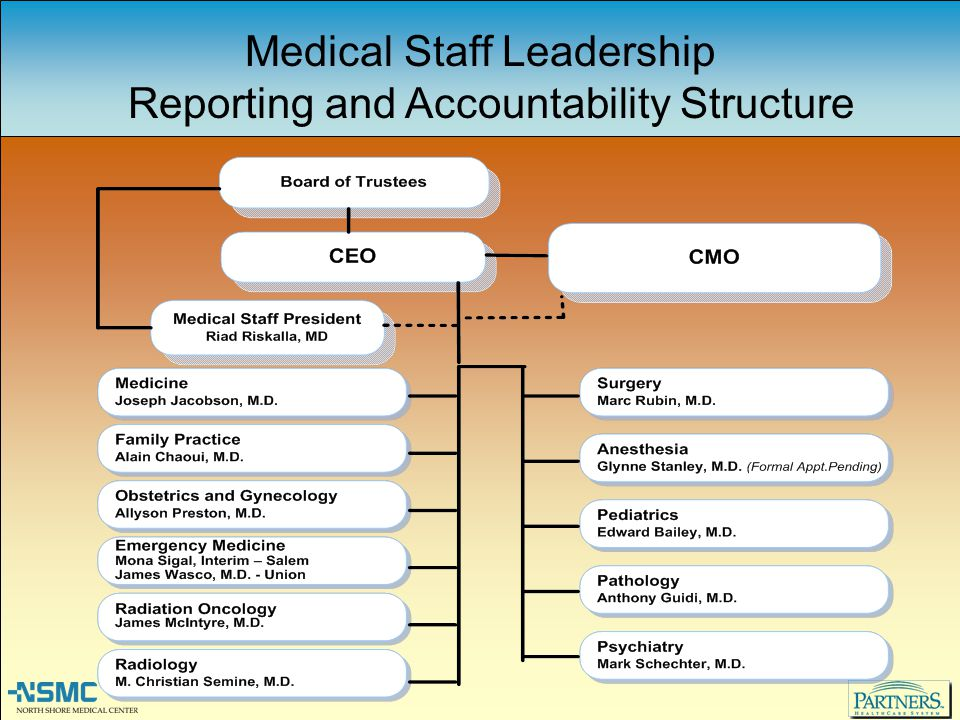Medical Staff Leadership Reporting and Accountability Structure