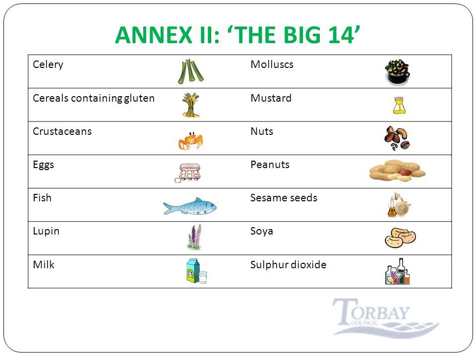 ANNEX II: 'THE BIG 14' CeleryMolluscs Cereals containing glutenMustard CrustaceansNuts EggsPeanuts FishSesame seeds LupinSoya MilkSulphur dioxide