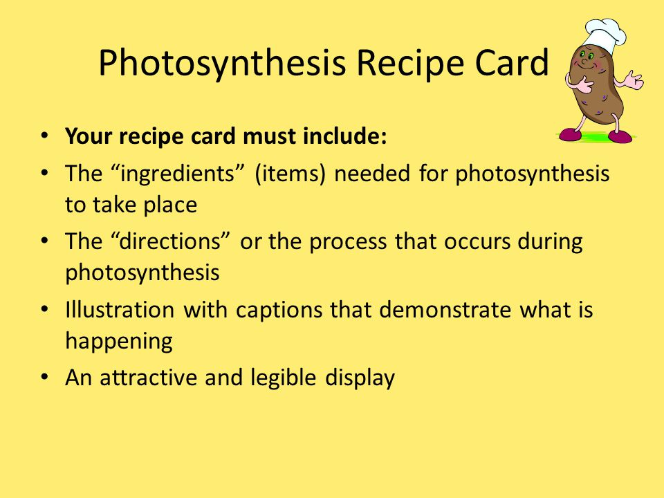 Photosynthesis Recipe Card Your recipe card must include: The ingredients (items) needed for photosynthesis to take place The directions or the process that occurs during photosynthesis Illustration with captions that demonstrate what is happening An attractive and legible display