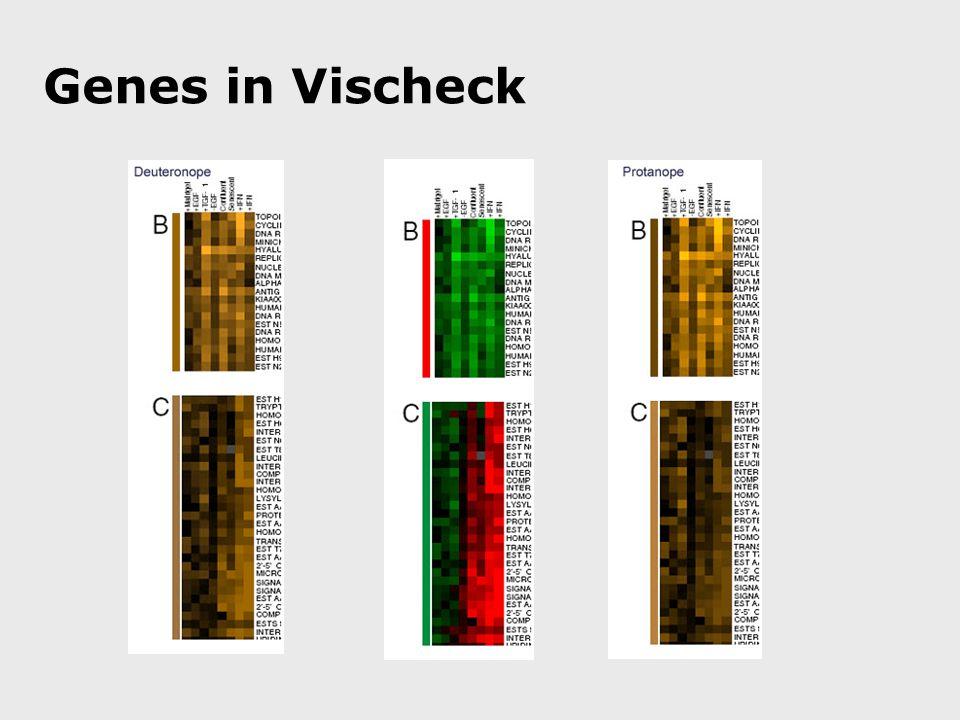 Genes in Vischeck