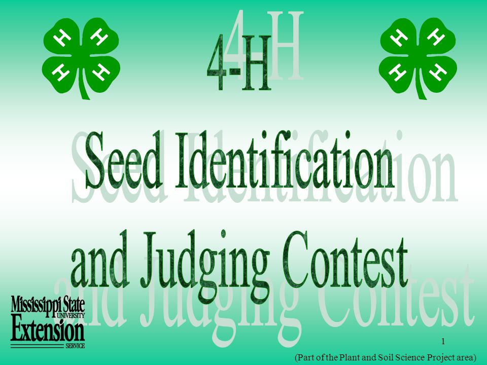 2 The 4-H Seed Identification and Judging Contest is designed to help you learn to determine seed quality and to identify certain crop and weed seeds.