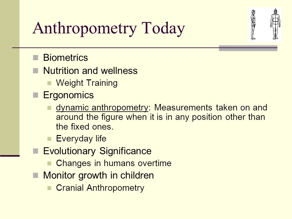 Anthropometry Today Biometrics Nutrition and wellness Weight Training Ergonomics dynamic anthropometry: Measurements taken on and around the figure when it is in any position other than the fixed ones.