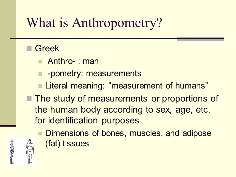 What is Anthropometry.