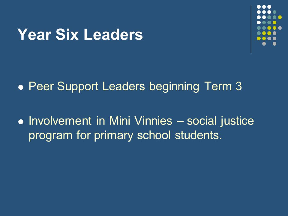 Year Six Leaders Peer Support Leaders beginning Term 3 Involvement in Mini Vinnies – social justice program for primary school students.
