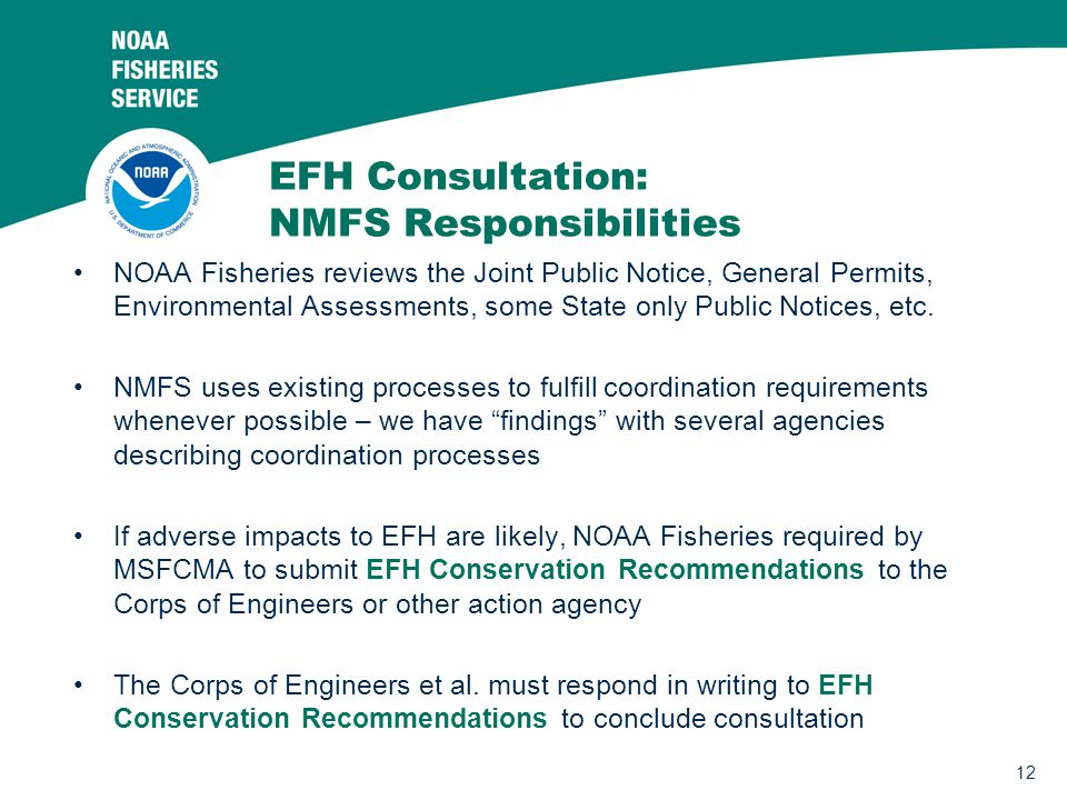 12 EFH Consultation: NMFS Responsibilities NOAA Fisheries reviews the Joint Public Notice, General Permits, Environmental Assessments, some State only