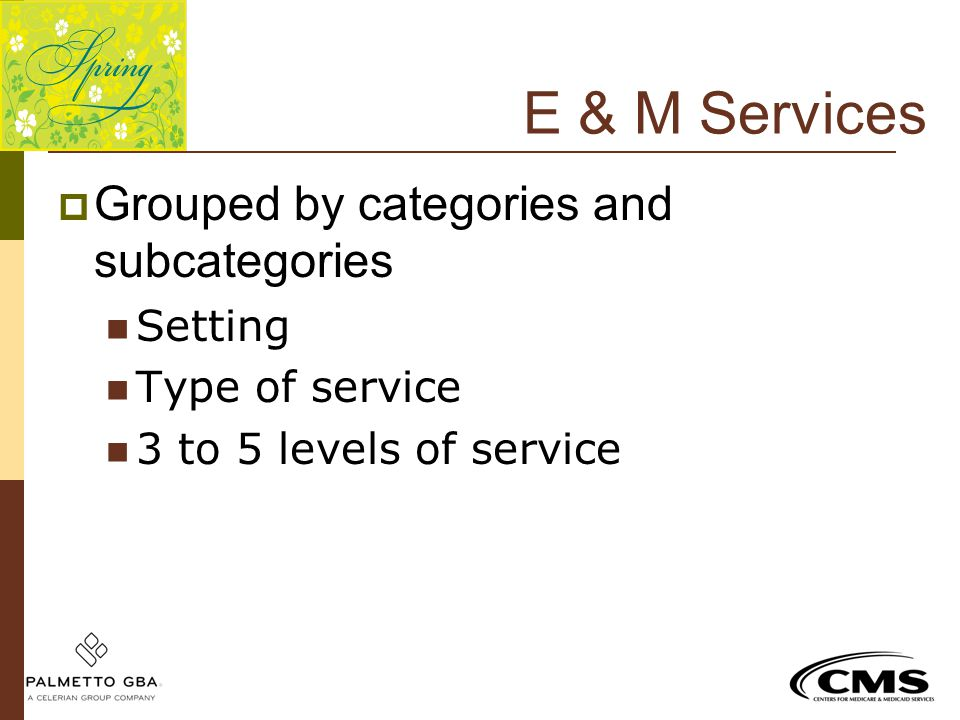 E & M Services  Grouped by categories and subcategories Setting Type of service 3 to 5 levels of service