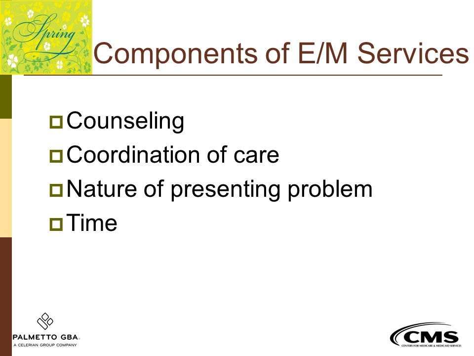Components of E/M Services  Counseling  Coordination of care  Nature of presenting problem  Time