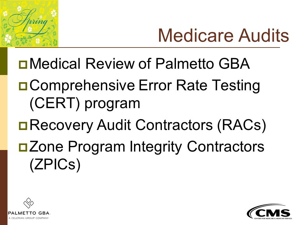 Medicare Audits  Medical Review of Palmetto GBA  Comprehensive Error Rate Testing (CERT) program  Recovery Audit Contractors (RACs)  Zone Program