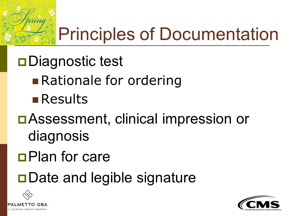 Principles of Documentation  Diagnostic test Rationale for ordering Results  Assessment, clinical impression or diagnosis  Plan for care  Date and