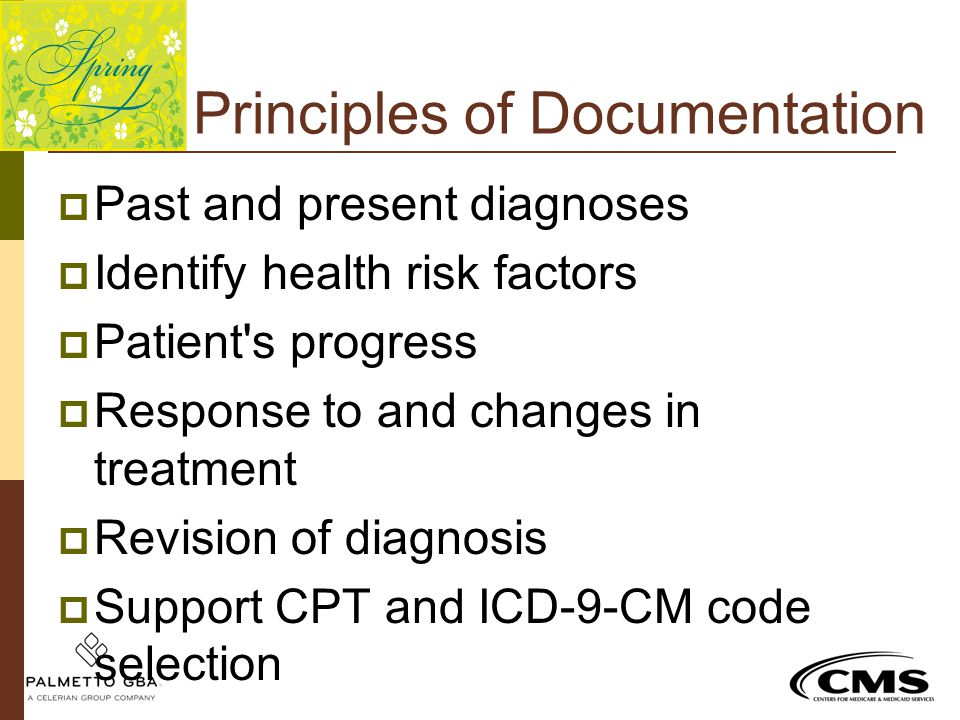 Principles of Documentation  Past and present diagnoses  Identify health risk factors  Patient's progress  Response to and changes in treatment 