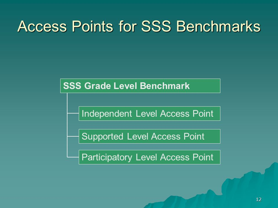 12 Access Points for SSS Benchmarks Supported Level Access Point Independent Level Access Point Participatory Level Access Point SSS Grade Level Benchmark