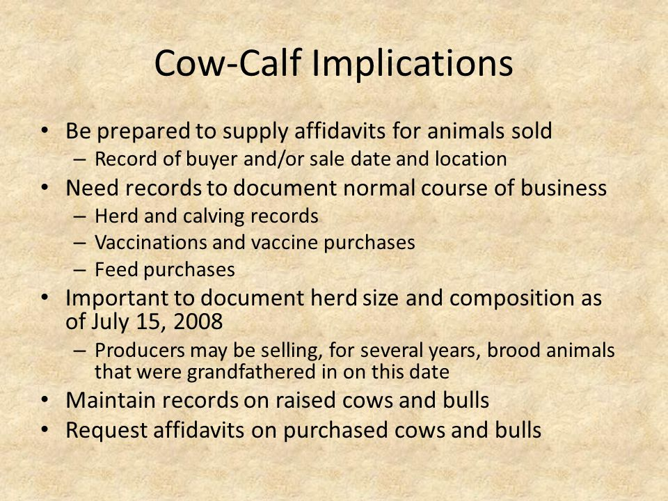 Cow-Calf Implications Be prepared to supply affidavits for animals sold – Record of buyer and/or sale date and location Need records to document normal course of business – Herd and calving records – Vaccinations and vaccine purchases – Feed purchases Important to document herd size and composition as of July 15, 2008 – Producers may be selling, for several years, brood animals that were grandfathered in on this date Maintain records on raised cows and bulls Request affidavits on purchased cows and bulls