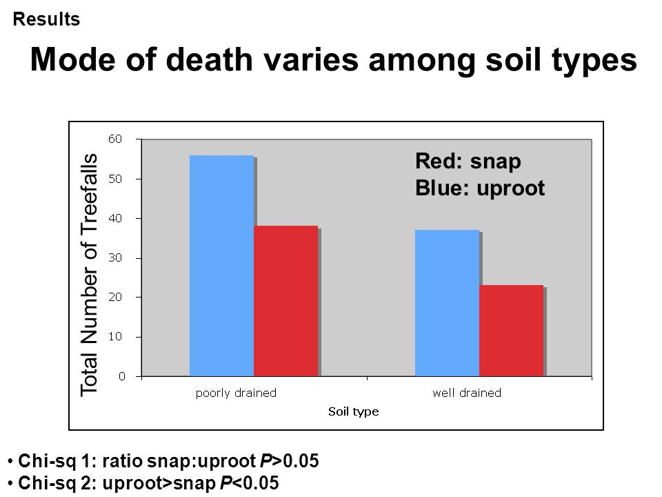 Mode of death varies among soil types Chi-sq 1: ratio snap:uproot P>0.05 Chi-sq 2: uproot>snap P<0.05 Red: snap Blue: uproot Total Number of Treefalls Results